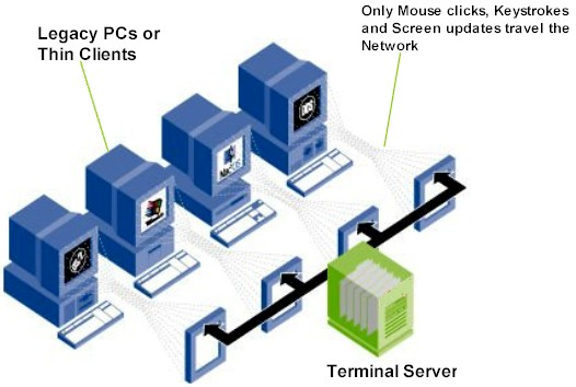 What is terminal server application server computing for Consul server vs client
